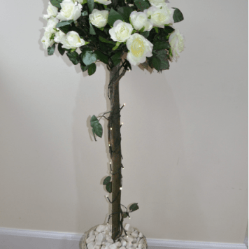 Topiary Rose Tree