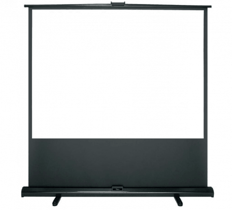 100″ Projector Screen