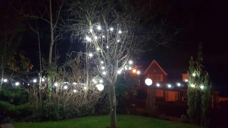 Cold White Festoon Bulbs