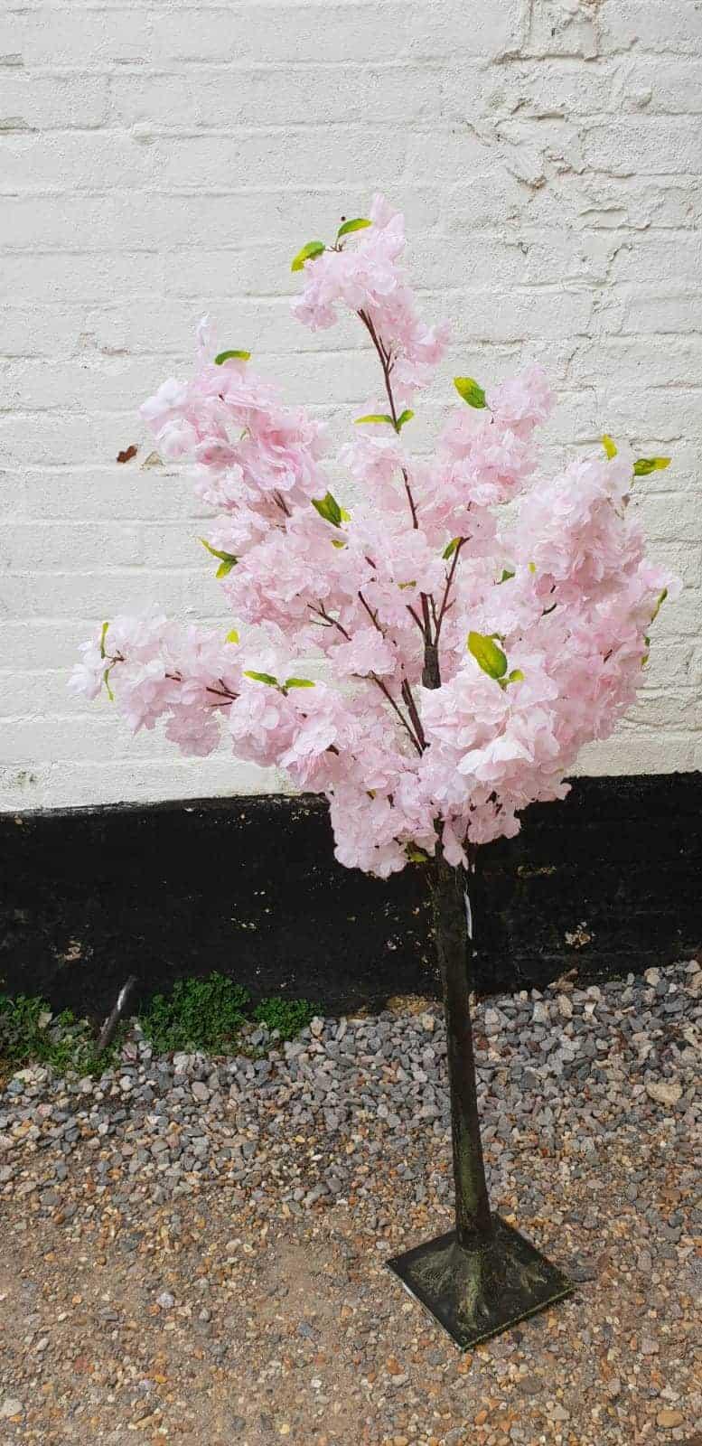 Pink Blossom Tree Hire Hertfordshire Bedfordshire